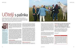 Azimut poletje / učitelji s pašnika / coaching s konji